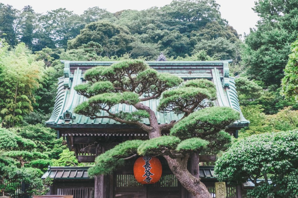 長谷寺の画像。
